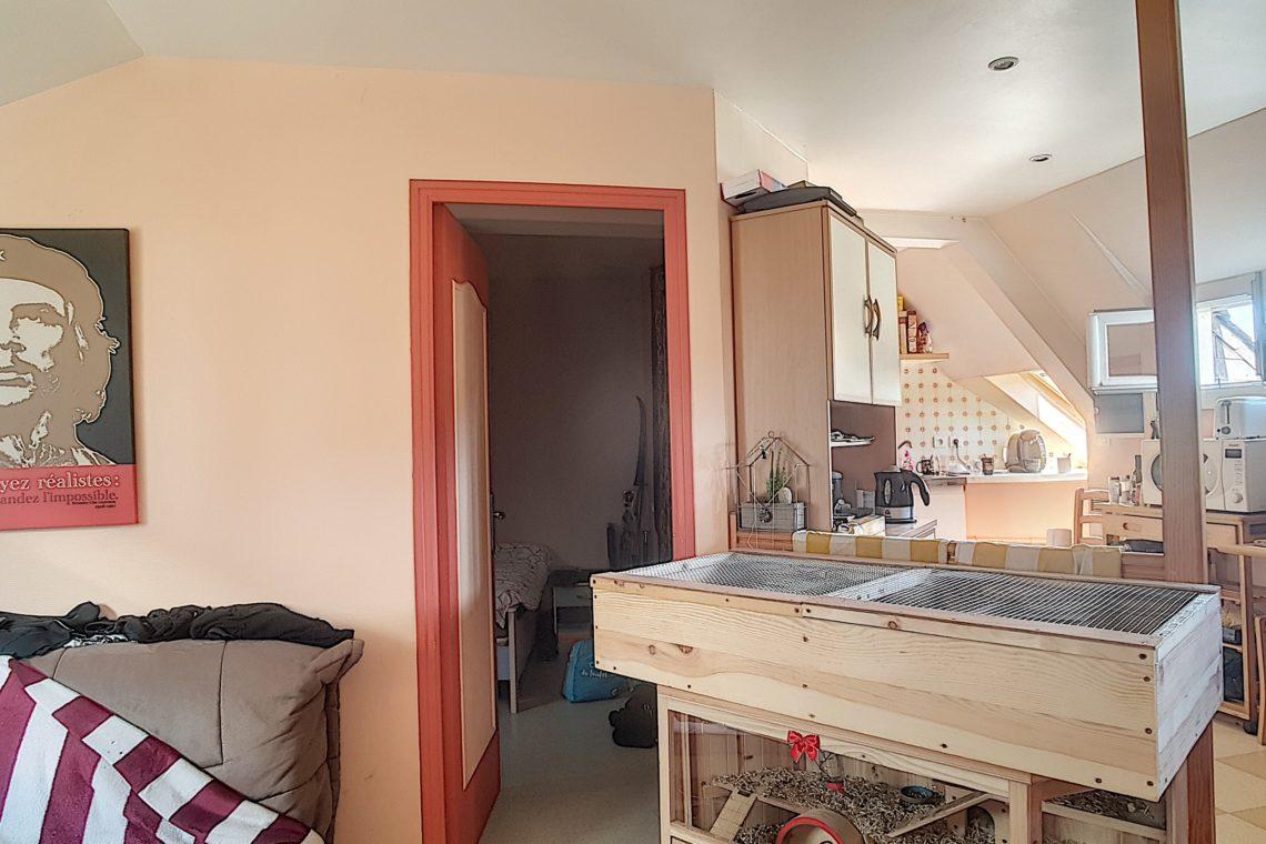immeuble 0464 appartement 2 pièce de vie