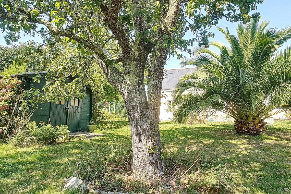 474_maison_lepalais_jardin